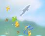 Play Dolphin Olympics 2