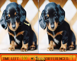 Play Differences in Puppy Land