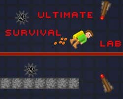 Play Ultimate Survival Lab