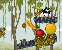 Play Toucan in the Jungle