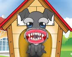 Play Doggy Dental Care