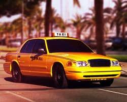 Play Miami Taxi Driver
