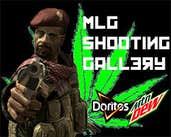 Play MLG SHOOTING GALLERY