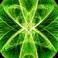 avatar for maniac1168