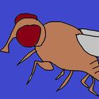 avatar for olivergg