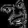 avatar for iiang
