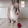 avatar for krisbristol41