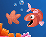 Play Star Fish