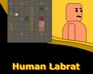 Play Human Labrat