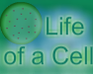 Play Life of a Cell
