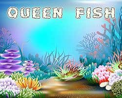 Play Queen Fish