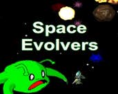 Play Space Evolvers