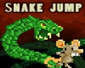 Play The Snake Jump