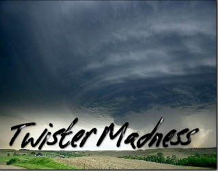 Play Twister Madness