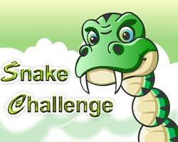 Play Snake Challenge