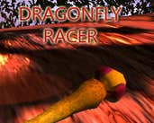 Play DragonFly Racer