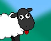 Play Sheep Walk