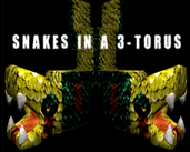 Play Snakes in a 3-Torus