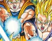 Play Dragon Ball Fierce Fighting v2.5