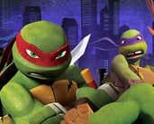Play Ninja Turtles Differences