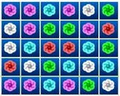 Play Flower Match Challenges