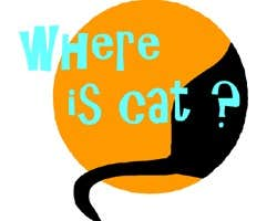 Play Where is cat?
