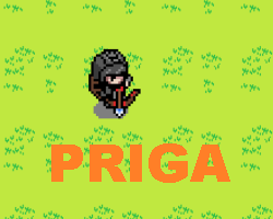 Play PRIGA - Idle Adventure RPG
