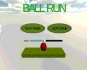 Play Ball Run