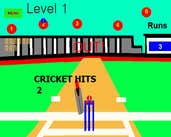 Play Cricket Hits 2