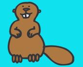 Play Beaver Falls
