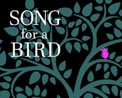 Play Song for a bird
