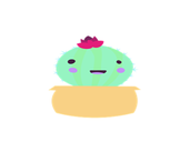 Play Cactus Test