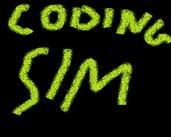 Play Coding Simulator v0.1