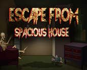 Play Escape From Spacious House