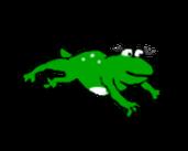 Play Froggi