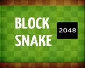 Play BlockSnake 2048