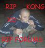 Play RIP KONG RIP FORUMS
