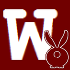 avatar for w3r3r4bb1t