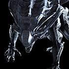 avatar for buggerd