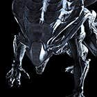 avatar for Fuzzyboy
