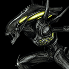 avatar for abdalacorleon