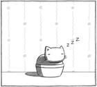 avatar for Catguy