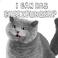 avatar for assaultmech