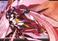avatar for catangel