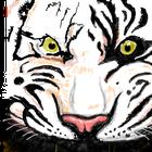 avatar for shadebane96