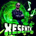 avatar for Xesenix