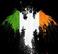 avatar for mandelion