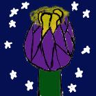 avatar for marionne11