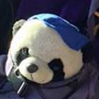 avatar for CarlChronoPanda7
