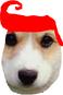 avatar for heyhi24